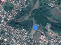 فروش زمین مسکونی 490 متر در شهرک بعثت در شیپور-عکس کوچک