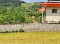 فروش زمین مسکونی 500 متر پایین کولا در شیپور-عکس کوچک