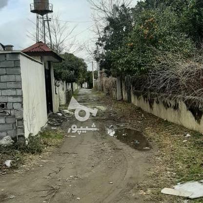 فروش زمین مسکونی 1800 متر در نوشهر در گروه خرید و فروش املاک در مازندران در شیپور-عکس4