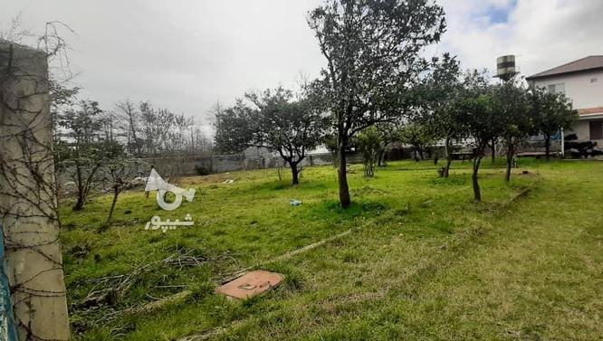فروش زمین مسکونی 1800 متر در نوشهر در گروه خرید و فروش املاک در مازندران در شیپور-عکس2