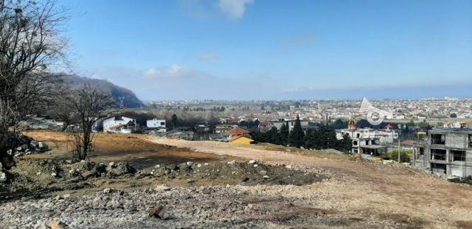 فروش زمین قطعه دو جنگل6000 متر در نوشهر در گروه خرید و فروش املاک در مازندران در شیپور-عکس1