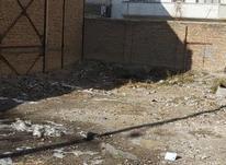زمین شمالی در ابوریحان سعدی در شیپور-عکس کوچک