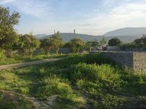 فروش زمین مسکونی 187 متر در چالوس در شیپور