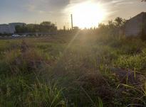 زمین 200 متری چالوس رینگ 45 متری در شیپور-عکس کوچک