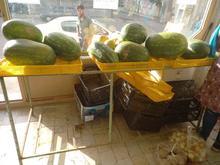 پالت میوه فروشی در شیپور