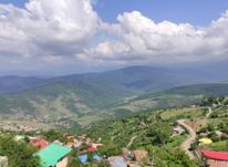 فروش زمین ییلاقی سواد کوه  در شیپور-عکس کوچک