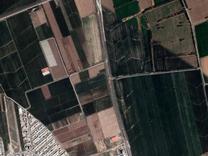 فروش زمین نظرآباد بر جاده بادامک 1800 متر در شیپور