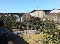 فروش زمین 600 متری پایین معلم سفلا در شیپور-عکس کوچک
