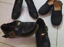 سه جفت کفش مشکی در شیپور-عکس کوچک