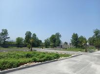 فروش زمین مسکونی 270 متری نوشهر ونوش در شیپور-عکس کوچک