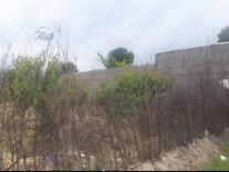 فروش باغ  1500 متر در شهریار در شیپور
