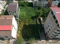 فروش زمین مسکونی 491 متر در تالش در شیپور