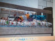 تخت کودک کاملا نو در شیپور