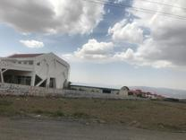 فروش زمین 1000 متر در آبسرد جابان در شیپور