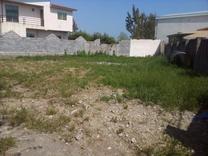 فروش زمین مسکونی منطقه برند  270 متر در چمستان در شیپور
