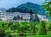 فروش زمین مسکونی 251 متر در سورخانی در شیپور-عکس کوچک