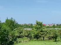 فروش زمین شهرکی قطعات 250 متری، نوشهر در شیپور