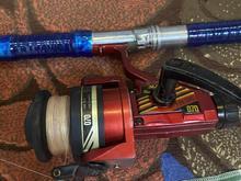 لنسر ماهیگیری بسیارسالم در شیپور
