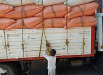 فروش کاه گندم درجه یک در شیپور-عکس کوچک