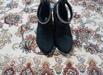 کفش سایز 40 در شیپور-عکس کوچک