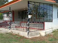 فروش ویلا 1502 متر در رضوانشهر در شیپور-عکس کوچک