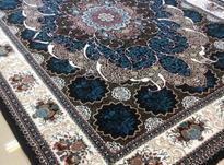 -فرش شهرگرشاسب*مستقیم از کارخانه بخرید* در شیپور-عکس کوچک