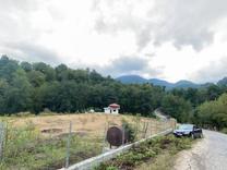 فروش زمین 3000 متر در سوادکوه در شیپور