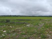 فروش زمین در کلوده در شیپور