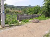 فروش520متر زمین صددرصد مسکونی روستایی در رودبارسرا در شیپور-عکس کوچک