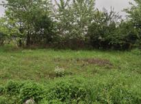 زمین کاملا بافت  در شیپور-عکس کوچک