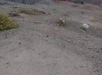 زمین دوراهی صد فوری در شیپور-عکس کوچک