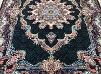 فرش شهیاد مشکی در شیپور-عکس کوچک