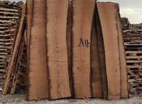 چوب گردو برش خورده و خشک در شیپور-عکس کوچک
