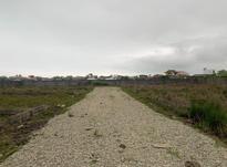فروش زمین مسکونی 337 متر در سلمان شهر در شیپور-عکس کوچک