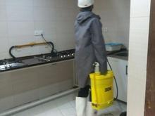 سمپاشی منزل محل کار موریانه زدایی سم پاشی سوسک ساس اصولی در شیپور
