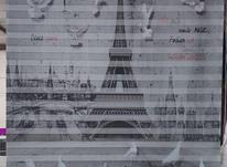 پرده زبرا چاپی در شیپور-عکس کوچک