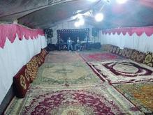 کرایه چادر در شیپور