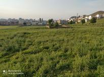 زمین بدون کاربری در شیپور-عکس کوچک