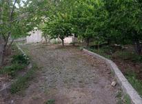 فروش باغچه 500 متر در آبیک روستای کاظم آباد در شیپور-عکس کوچک