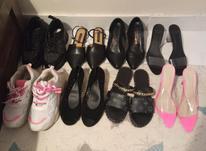 8 جفت کفش به صورت یکجا در شیپور-عکس کوچک