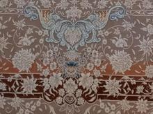 فرش 6 متری طرح خاطره کاشان 1400 شانه در شیپور
