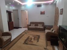 همخونه خانم در شیپور