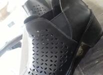 کفش راحتی مجلسی در شیپور-عکس کوچک