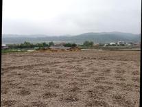 زمین 500متری با ویویی عالی  در شیپور