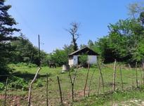 فروش زمین مسکونی 1000 متر در رودبارسرا در شیپور-عکس کوچک
