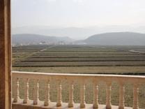 فروش زمین مازندران سرخرود.درویش آباد 232 متری در شیپور