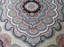 فرش دربار کاشان باغ ملک 9متری ، ماشینی، طرح 700 شانه در شیپور-عکس کوچک