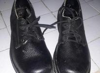 کفش ایمنی جلو آهنی در شیپور-عکس کوچک