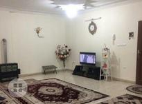 اجاره آپارتمان 115 متر در فلاح در شیپور-عکس کوچک