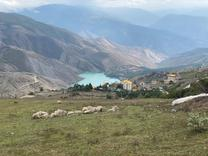 1000 متر زمین در ولشت ویوی بی نظیر دریاچه (زیر قیمت منطقه ) در شیپور